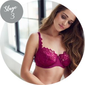 Bra Fitting Guide - Stage 3 Bra Straps